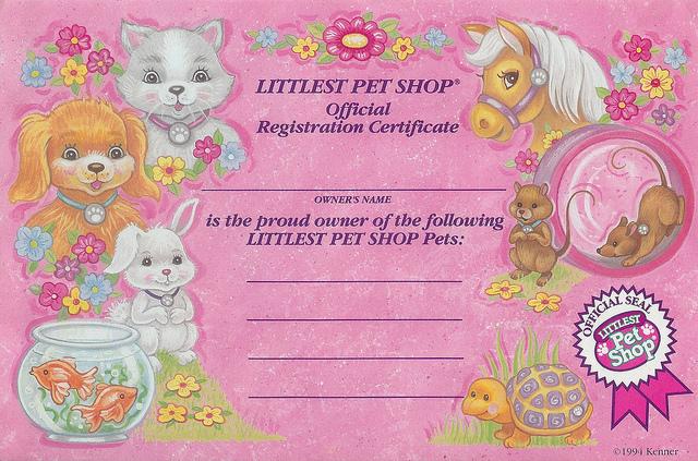 Pet shop essay